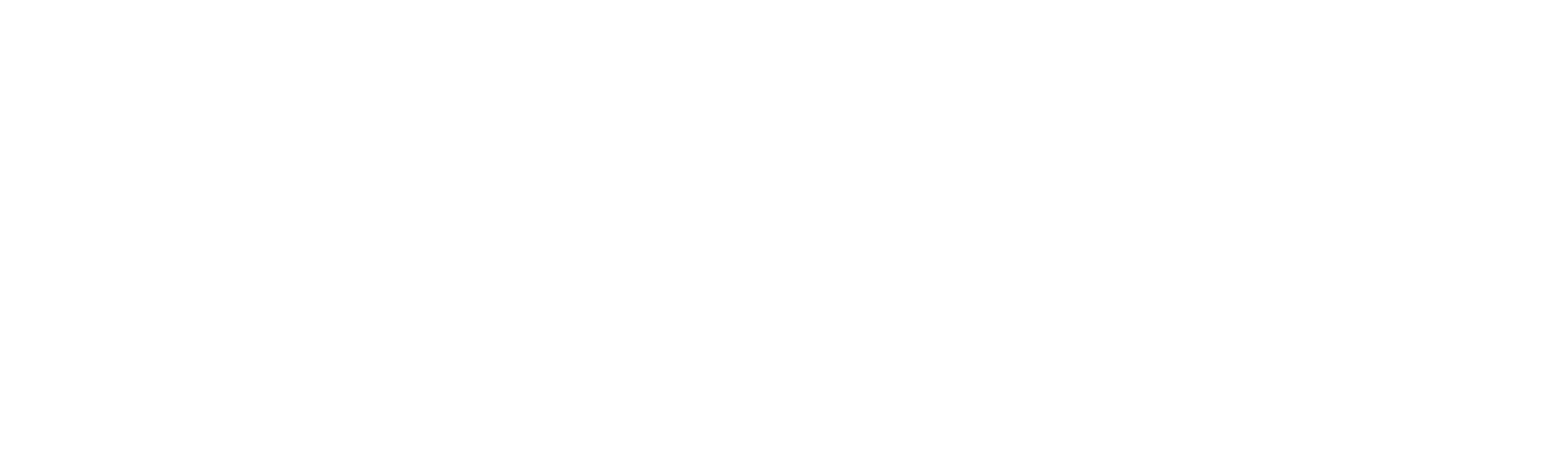 The Reader Writes the Story